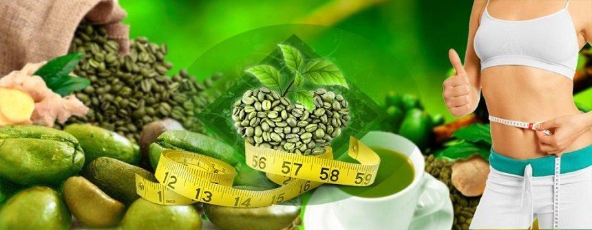 Grüner Kaffee Mit Ingwer grüner kaffee mit ingwer für die gewichtsabnahme bewertungen